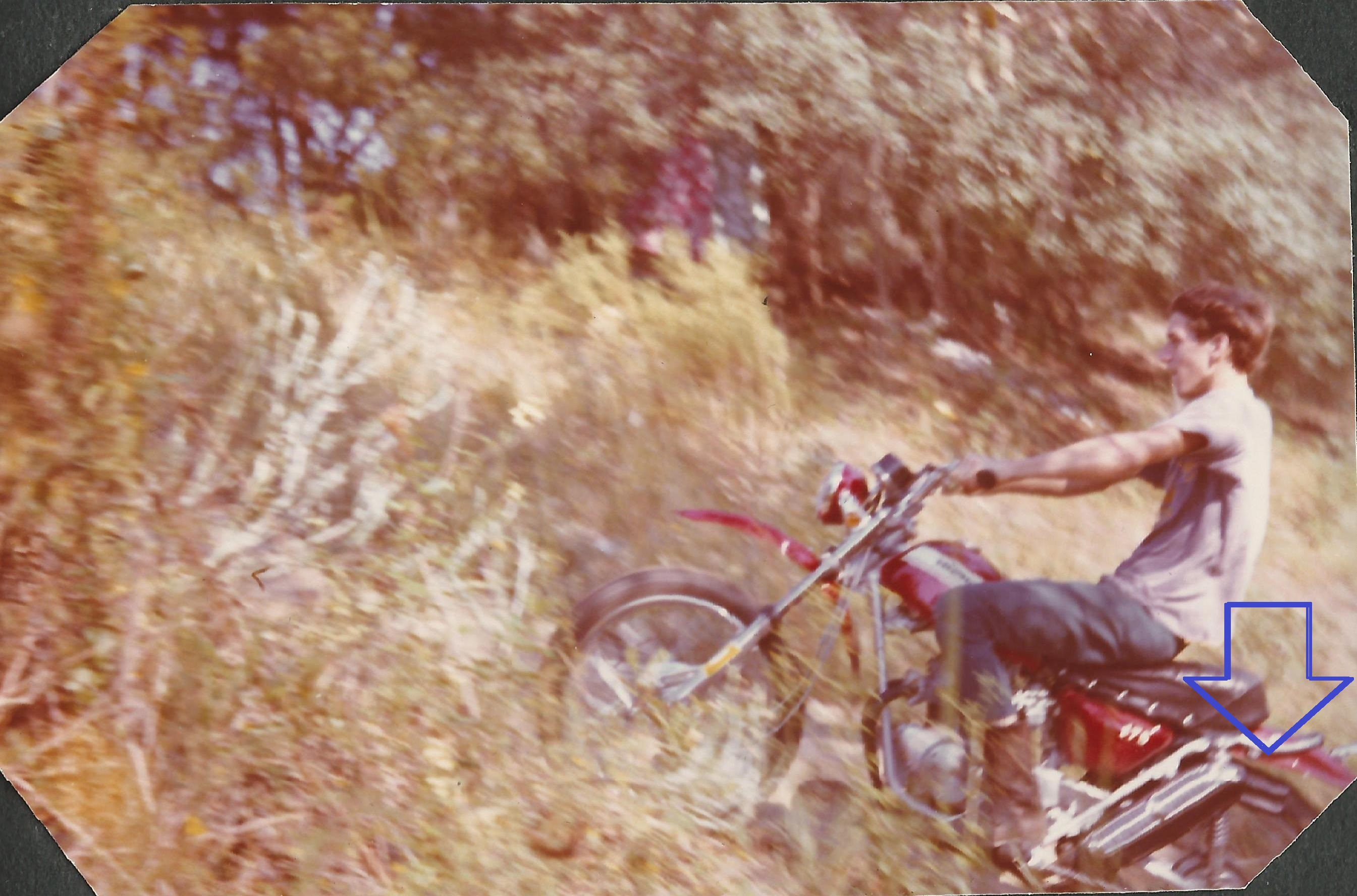 What was your first motorcycle?-sl175citrusclimb.jpg