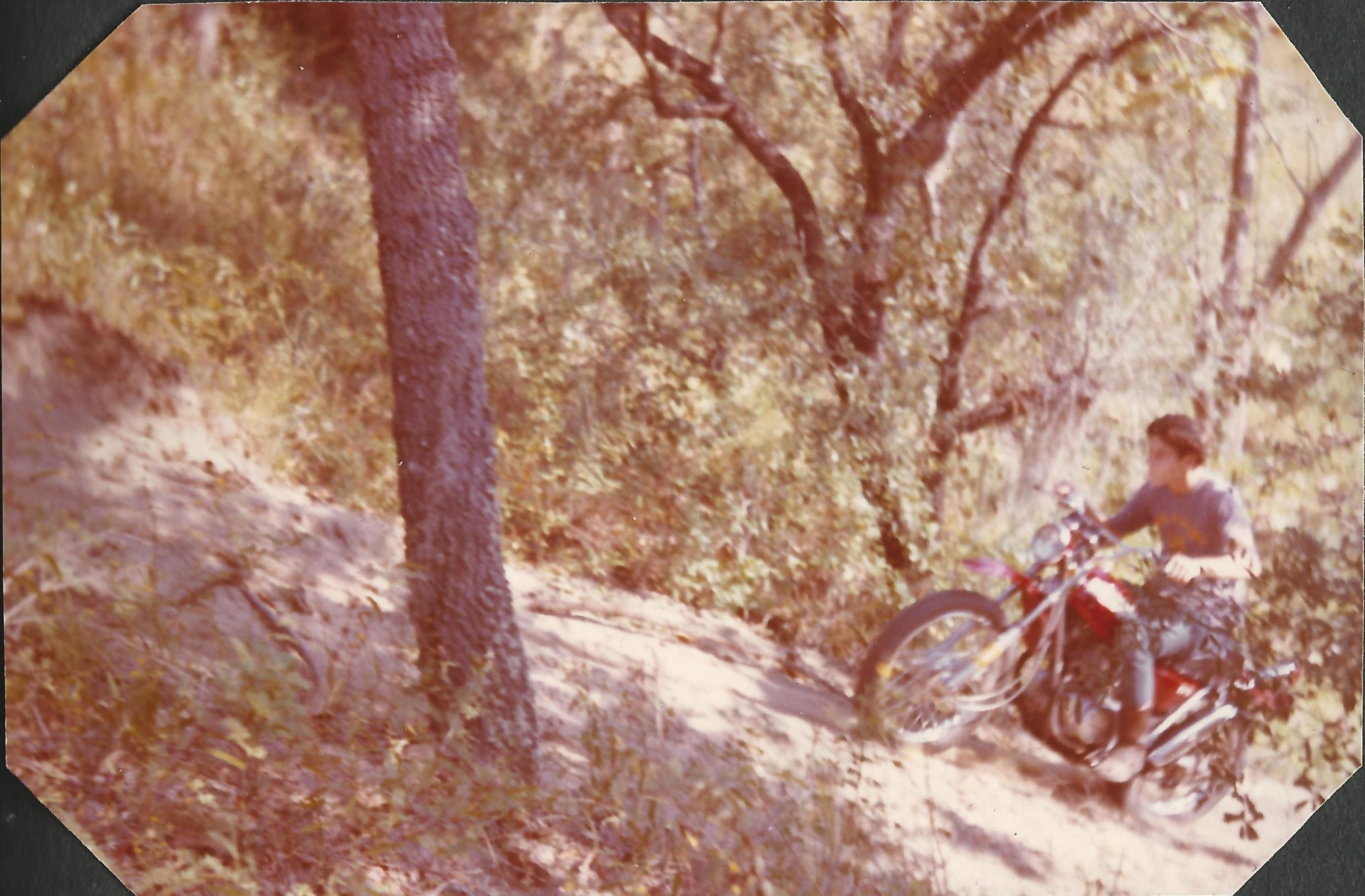 What was your first motorcycle?-sl175citrusclimb2.jpg